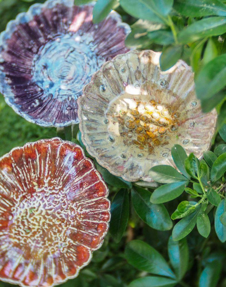 fleurs-coupes